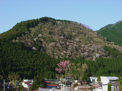 oharayama
